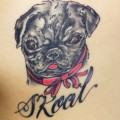 A tattoo of Melanie's pug Skoal. Tattooed by Jason Feuerstein at Nothing to Lose Tattoo.
