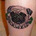 Arwen the Pug - Tattooed by Patrick Adams at Underworld Ink