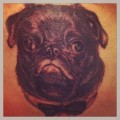 Handsome Bow Tie Black Pug - Tattooed at Hold Fast Tattoo Studio in California, USA