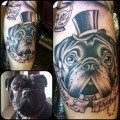 Gentleman Pug - Tattooed by Dan Wilson at Dark Circle Tattoos in Middlesbrough, UK