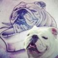 Winston the Bulldog - Thanks Jamie from Southampton, UK!