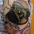 Sherlock Pug - Tattooed by Glen Davis (In Progress)
