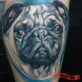Tattooed by David Osorio at Afflicted Ink Tattoo