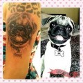 Nina the Pug - Tattooed by Daniel Gutierrez