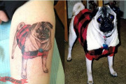 Pug Tattoo Story – Memorial Tattoo of Java the Pug