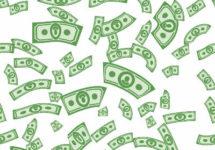 Money Pug cost
