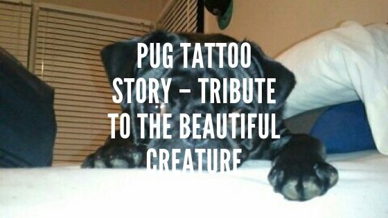 Pug Tattoo Story – Tribute to the Beautiful Creature