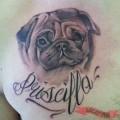 Chest Pug Tattoo on Michele Bagatin by Lady Duck Tattoo in Villanova del Ghebbo, Rovigo, Italy
