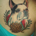 Oliver the Boston Terrier - by Zack Spurlock at Anonymous Tattoo, Savannah, GA, USA