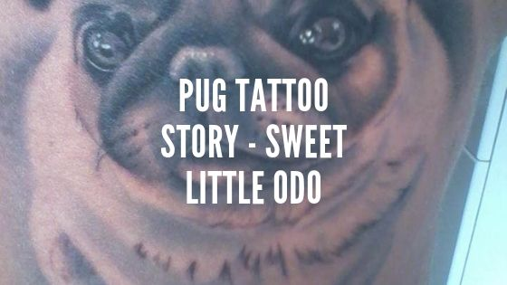 Pug Tattoo Story – Sweet Little Odo