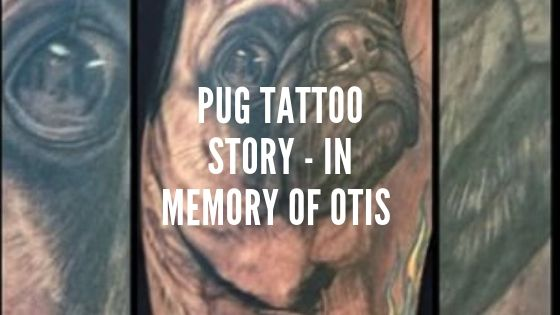 Pug Tattoo Story – In Memory of Otis the Pug