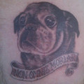 RIP Dylan Pug Tattoo - Submitted by Joel Carson