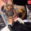 Leg Pug Tattoo by Trine Glue