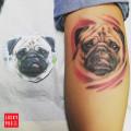 Leg Pug Tattoo on Daniela Steuten, by Marcel