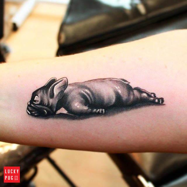 b34ff1fb7 French Bulldog Tattoos | Boxer, Boston Terrier & British English ...
