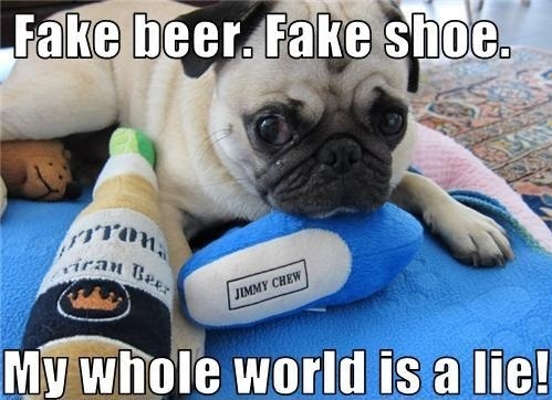 pug-meme-fake-beer-fake-shoe-fake-life