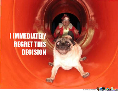 pug-meme-i-immidiately-regre0this-decision