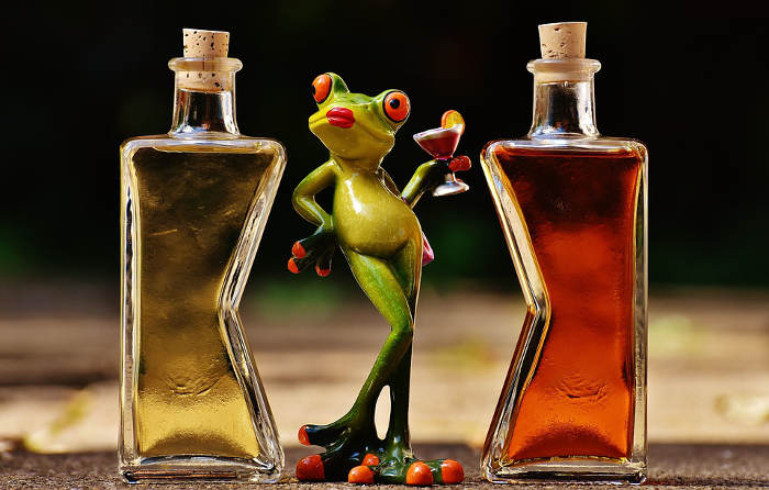 frog with alcohol