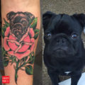 Morcilla the pug tattoo by Eric Doyle of Globe Electric
