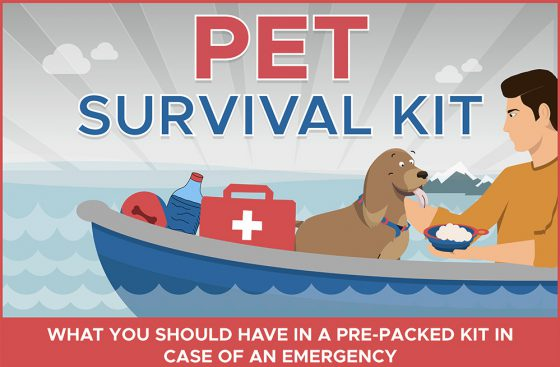 How to Prepare for Disasters and Emergencies for Dogs [Infographic]