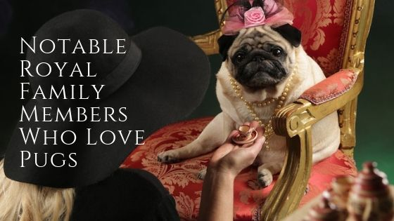 Notable Royal Family Members Who Love Pugs