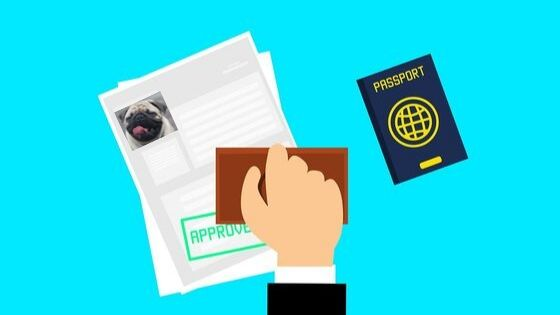 pet passport pug
