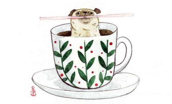 teacup pug cartoon