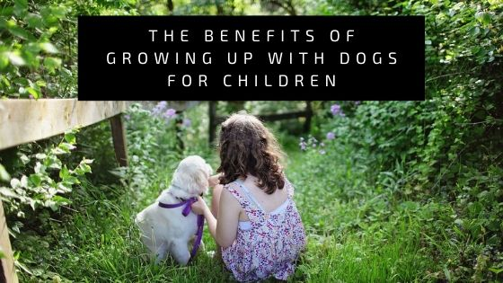 The Benefits of Growing up With Dogs for Children