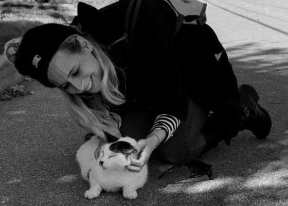 nancy mello animal communicator