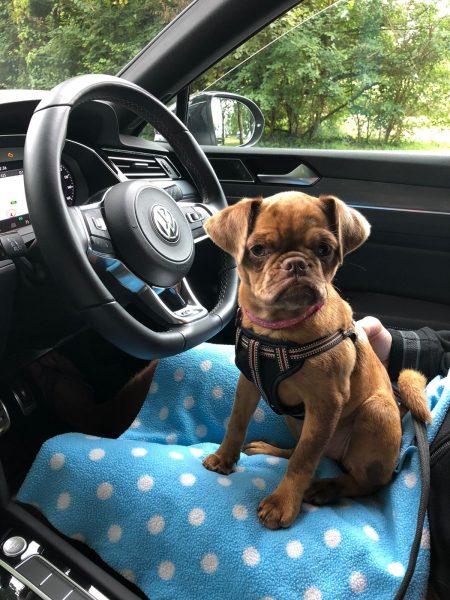Coco Brug in a car